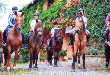rendola_riding_horses